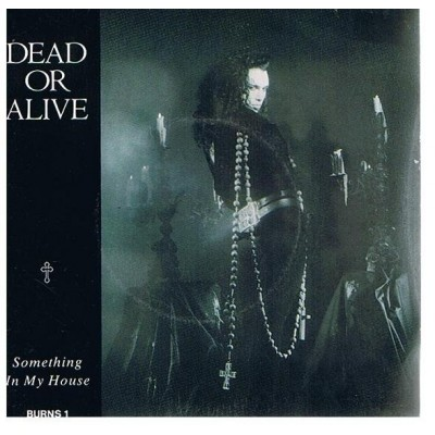 Dead Or Alive - Something In My House