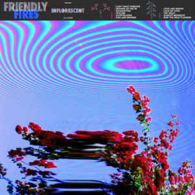 Friendly Fires ‎– Inflorescent LP NEW 2019