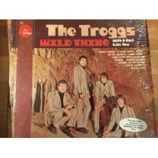The Troggs – Wild Thing LP US 1966 Stereo