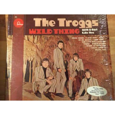 The Troggs ‎– Wild Thing LP US 1966 Stereo